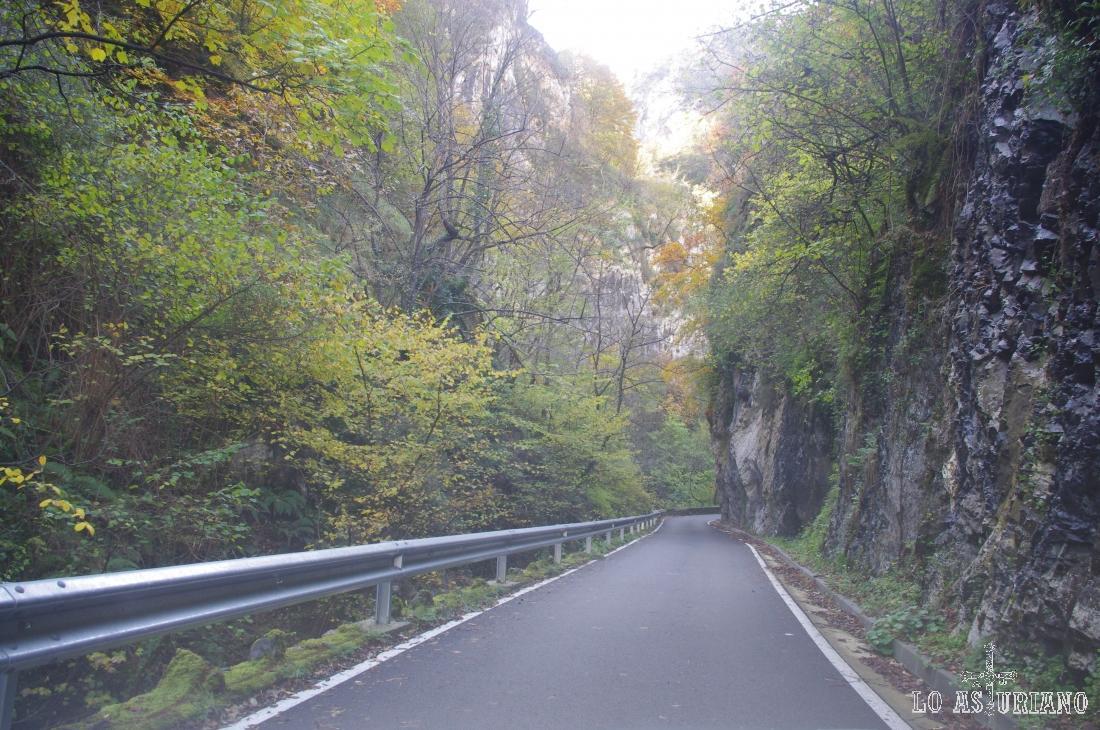 Desfiladeros, junto al río Ponga, en el espectacular concejo de Ponga, uno de los más agrestes de Asturias.