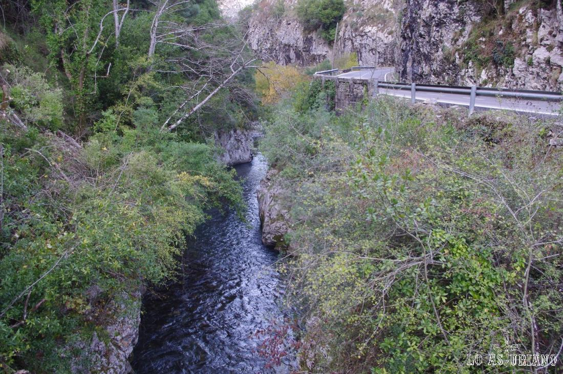 El río Sella en el desfiladero de los Beyos.