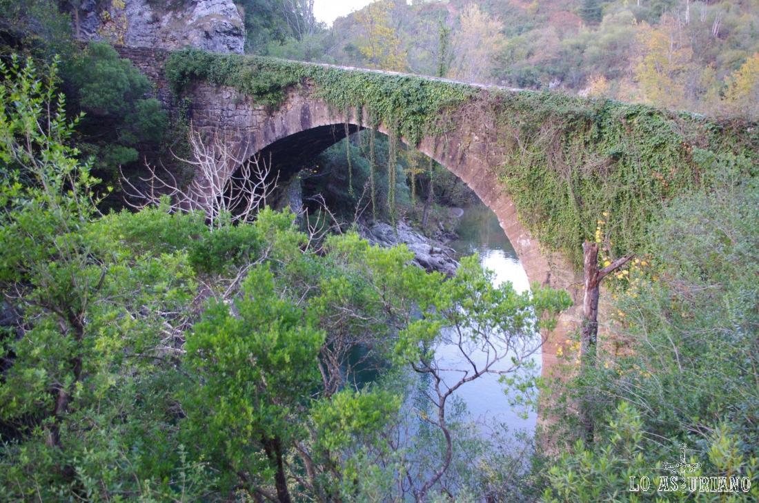 Desde Cangas de Onís, por la carretera de Castilla, llegamos en 10 km al puente de los Grazos.