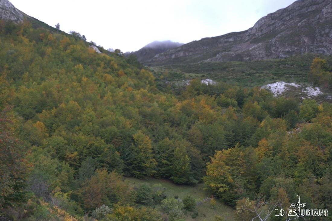 La Peña la Franca, escondida por la niebla, que está tras el bosque de La Enramada.