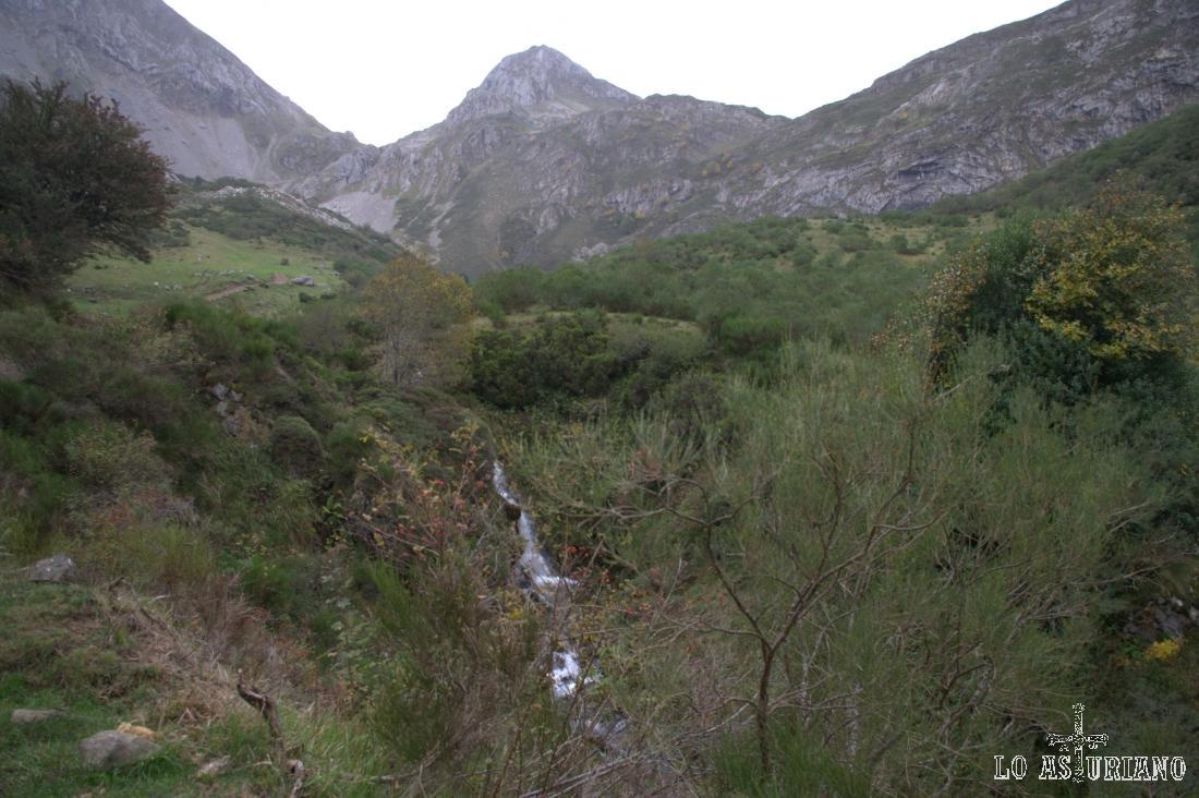 Cascadita en el parte alta del río Sousas.