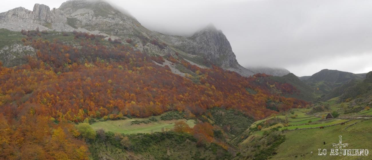 Hacia el oeste, vistas de los preciosos rojizos de los hayedos de Canchobreiru, con los altos de Las Camposas, Penouta y Canseco, entre las nieblas.