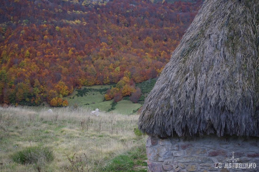 Los bosques del Canchobreiru en otoño, en Somiedo.