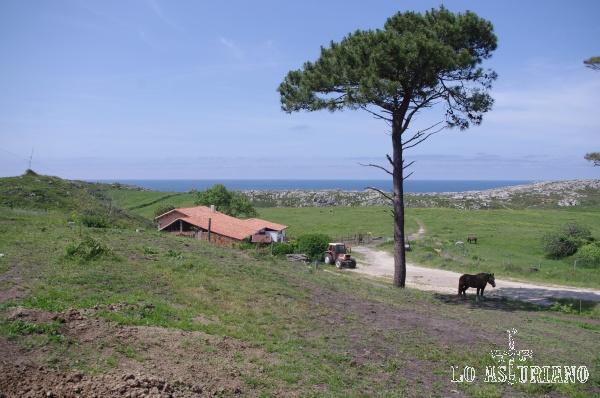 Entorno de la playa de las Cuevas del Mar, cerca del cabo del Mar.