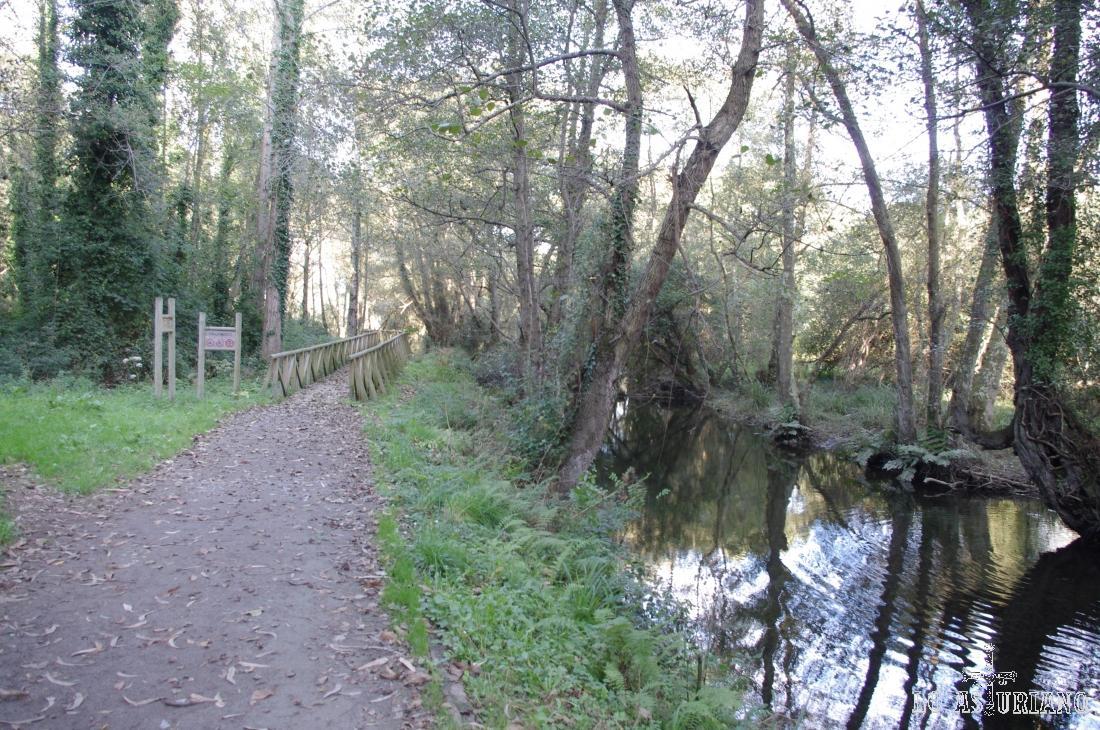 El río Uncín, llegando a la Concha de Artedo.