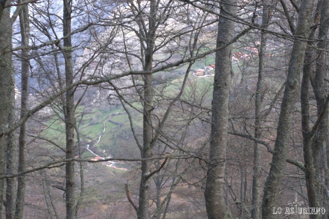 Villa de Sub a través del hayedo de Montegrande.