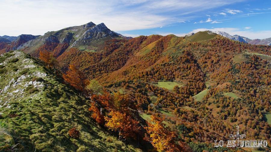 Pico Zorru y Luengu y bosque de Peloño